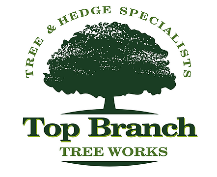 Top Branch Tree Works