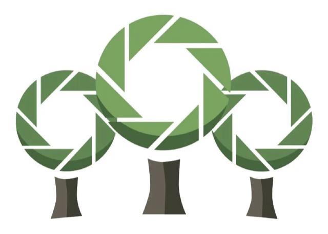 EBW Tree Care